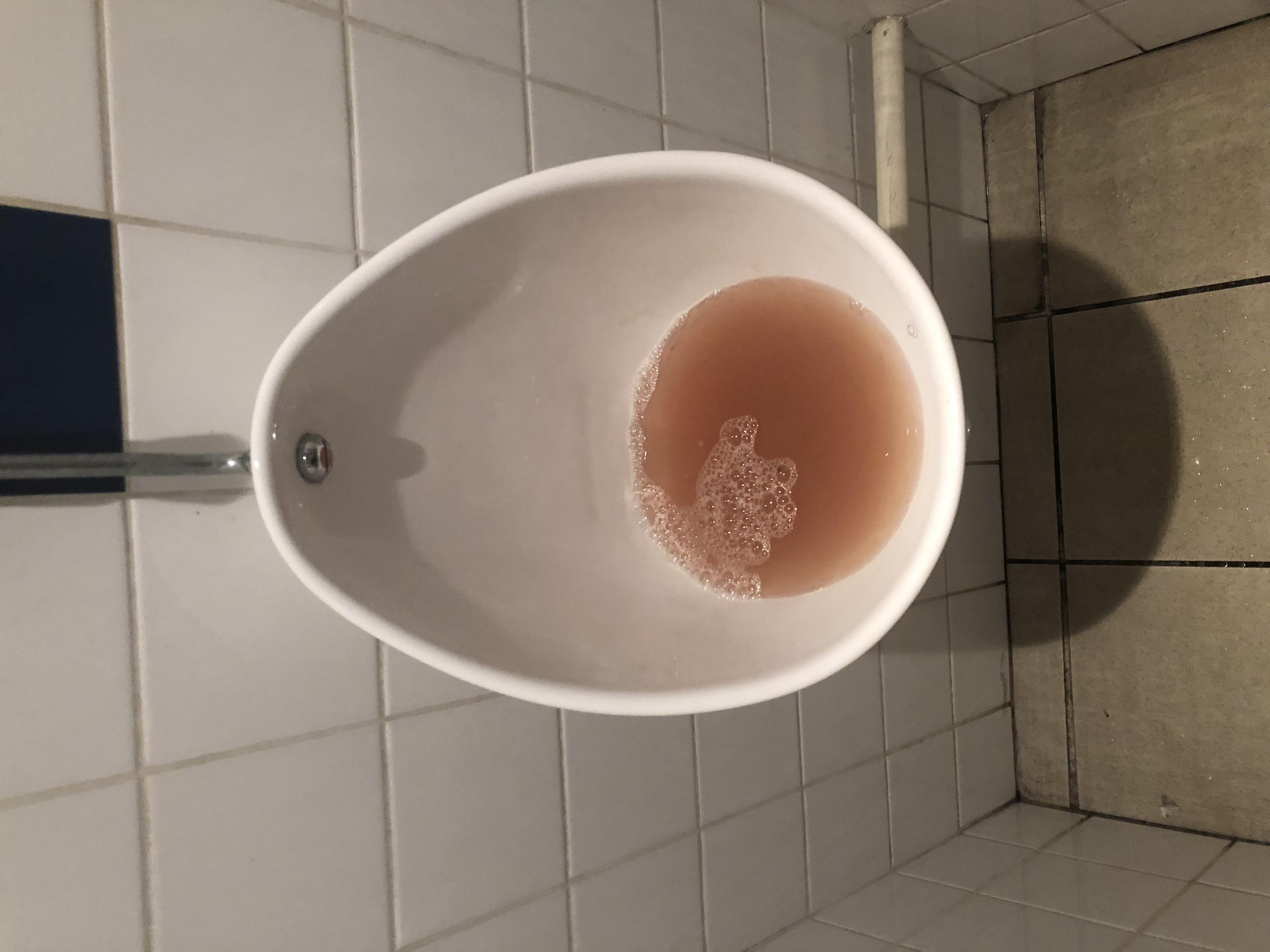 Nettoyer Lunette Toilettes Vinaigre Blanc toilettes bouchées?comment déboucher des wc? - le blog